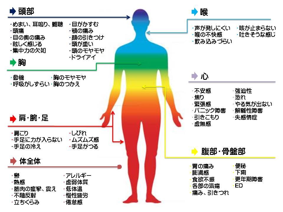 自律神経、頭、飯田橋、症状、うつ